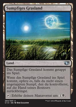 Sumpfiges Grasland
