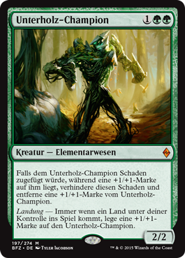 Unterholz-Champion