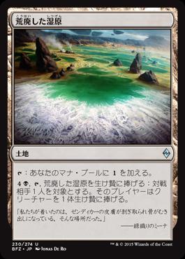 荒廃した湿原
