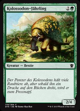 Kolossodon-Jährling