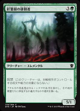 針葉樹の徘徊者