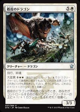 盾皮のドラゴン