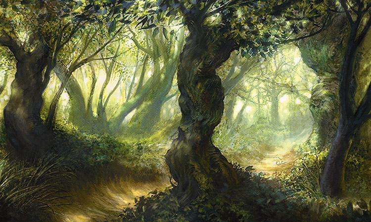 http://media.wizards.com/2015/images/daily/cardart_ORI_Forest-159391.jpg
