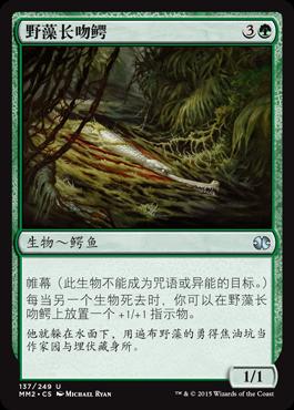 野藻长吻鳄