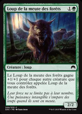 Loup de la meute des forêts