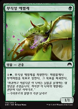 부식성 애벌레