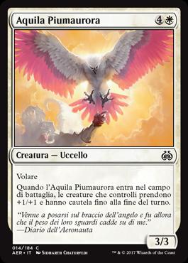 Aquila Piumaurora