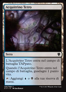 Acquitrino Tetro