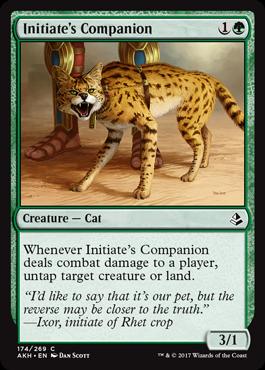 Initiate's Companion