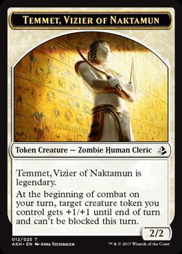 ナクタムンの侍臣、テムメト・トクーン