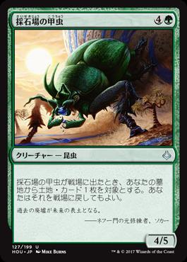 採石場の甲虫
