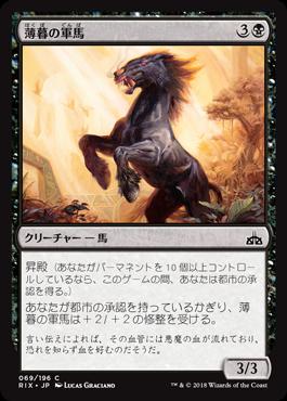 薄暮の軍馬