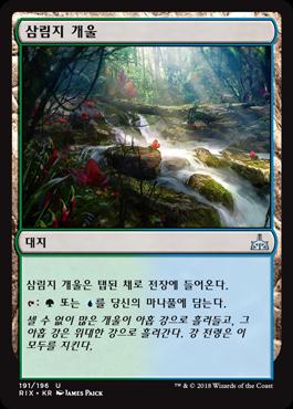 삼림지 개울