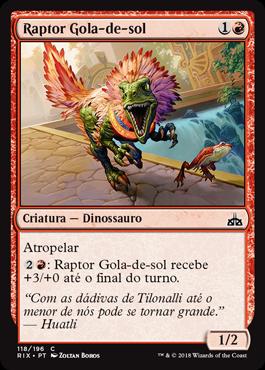 Raptor Gola-de-sol