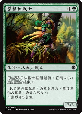 繁根林戰士