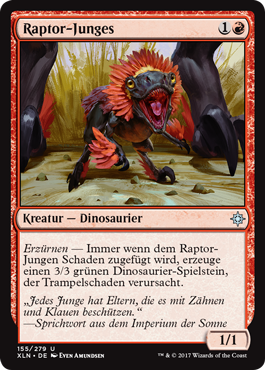 Raptor-Junges