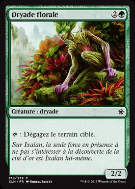 Dryade florale