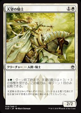 天望の騎士