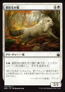 銀筋毛の狐