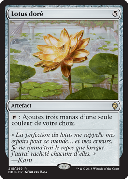 Lotus doré