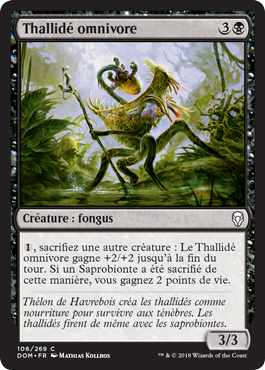 Thallidé omnivore