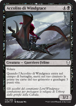 Accolito di Windgrace