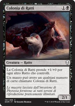 Colonia di Ratti