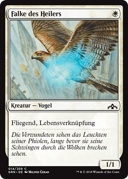Falke des Heilers
