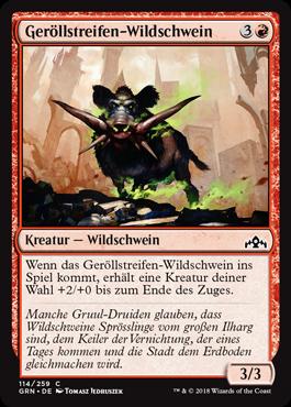 Geröllstreifen-Wildschwein