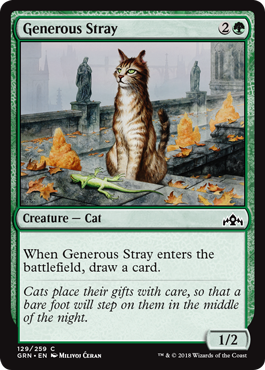 Image of Generous Stray