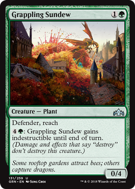 Image of Grappling Sundew