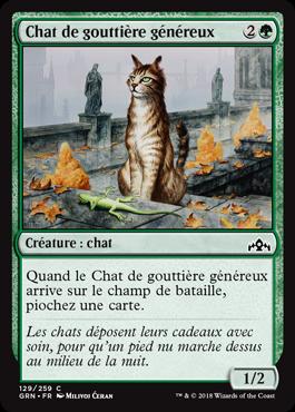Chat de gouttière généreux