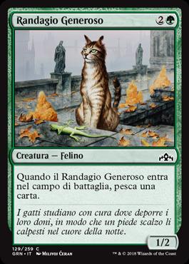 Randagio Generoso