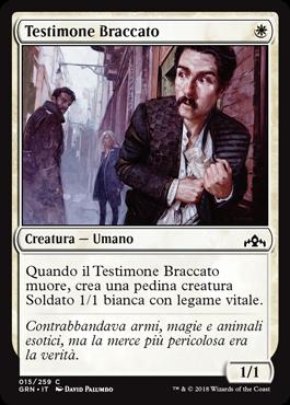 Testimone Braccato