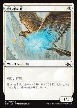 癒し手の鷹