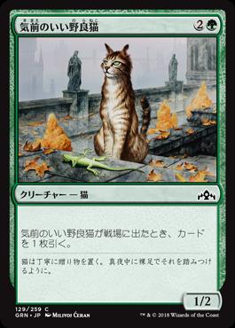 気前のいい野良猫