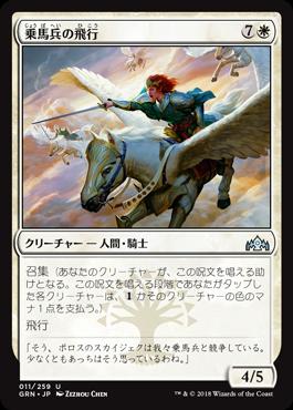 乗馬兵の飛行