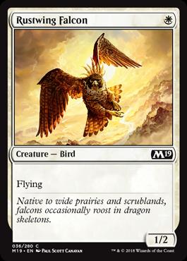 Rustwing Falcon