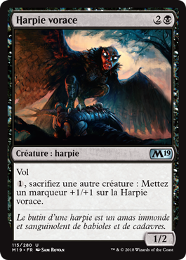 Harpie vorace