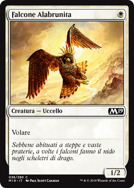 Falcone Alabrunita