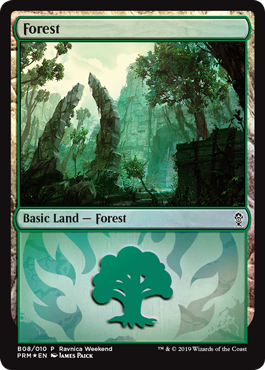 Forest (Gruul)