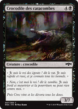 Crocodile des catacombes