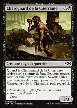 Charognard de la Citerraine