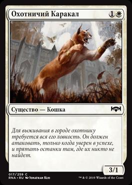 Охотничий Каракал