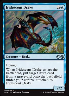 Iridescent Drake