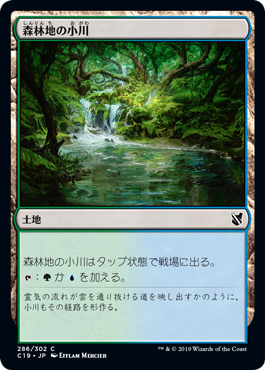 森林地の小川