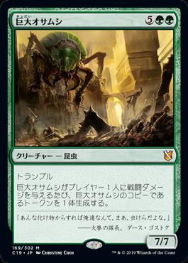 巨大オサムシ(Giant Adephage)