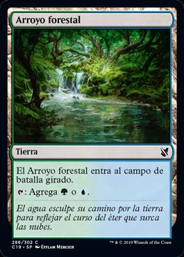 Arroyo forestal