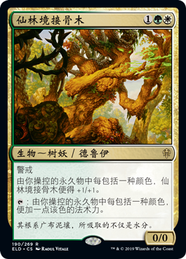 仙林境接骨木