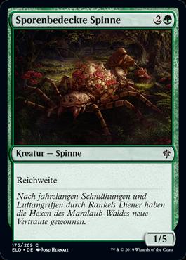 Sporenbedeckte Spinne